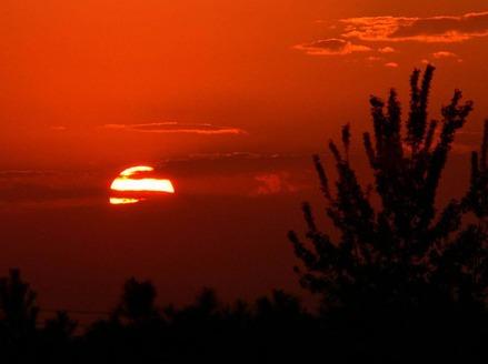 一起公园看日出,感受天地灵气