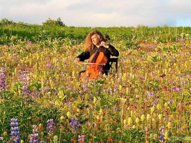 迷你草地音乐分享会