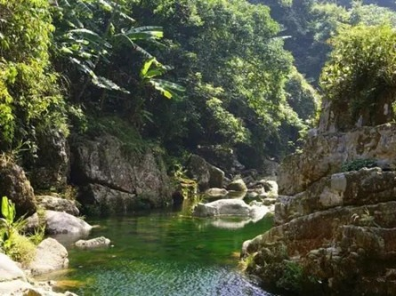 10月13南宁上林下水源一日游68元/人