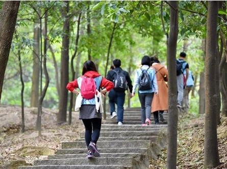 帅哥美女相约森林公园徒步游玩