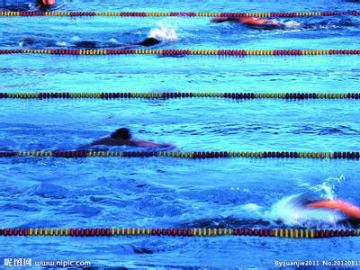 清凉一夏,游泳聚会
