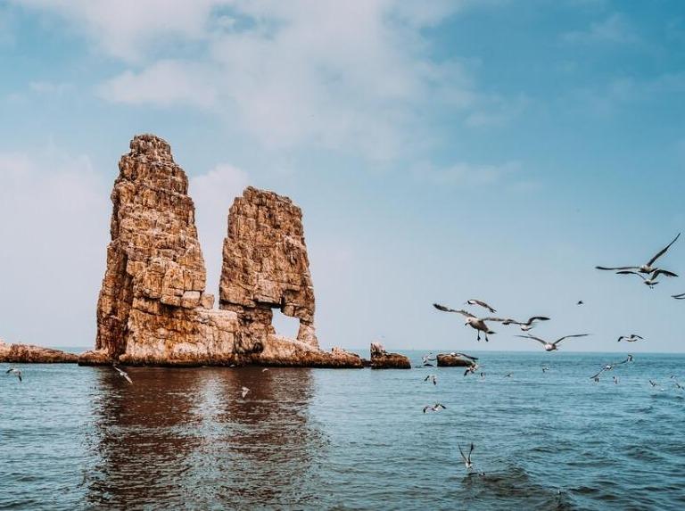 趁着五一去长岛喂海鸥、看海豹、吃海鲜!
