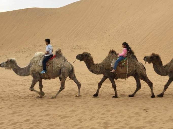 清明假期—库布奇沙漠轻装徒步,免费提供露营装备。