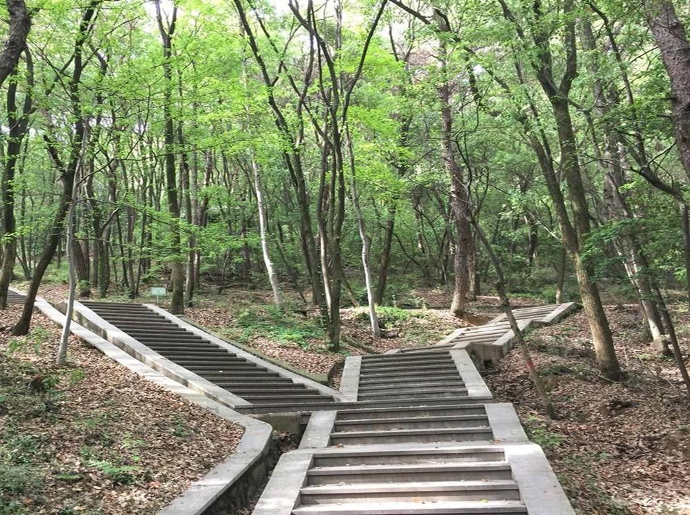 东湖七山休闲徒步体能拉练-初级