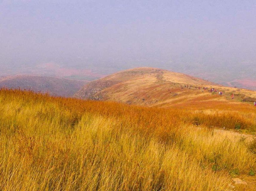 11月12号周日大自然相约偃师黄金大草原