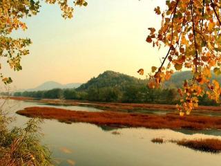 深秋赏红叶观日出