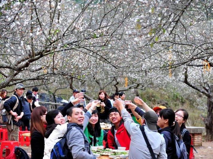 1月13日惠东御景峰赏梅,摄影徒步