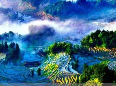 在娄底,一起去看紫鹊界梯田