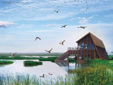 五一崇明岛东西滩湿地郊游