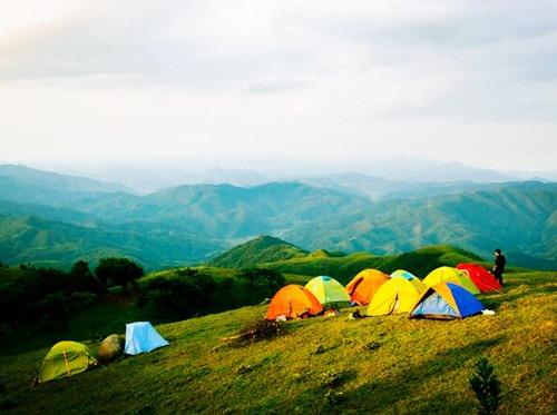 茶山扎营 陪你去看流星雨 赏日出日落风车