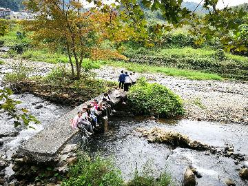 星溪线竹海穿越挖竹笋摘枇杷吃竹筒饭