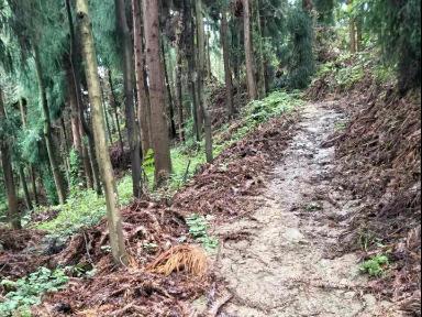 彭州小渔洞猴王谷徒步游