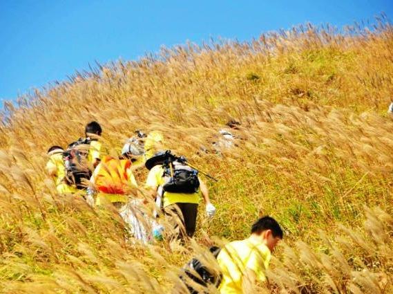 11月19日登千米高峰白云障 赏芦苇