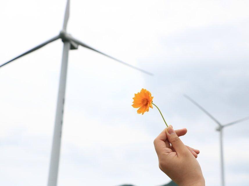 第二期 5.28周日 浙江最美风车公路