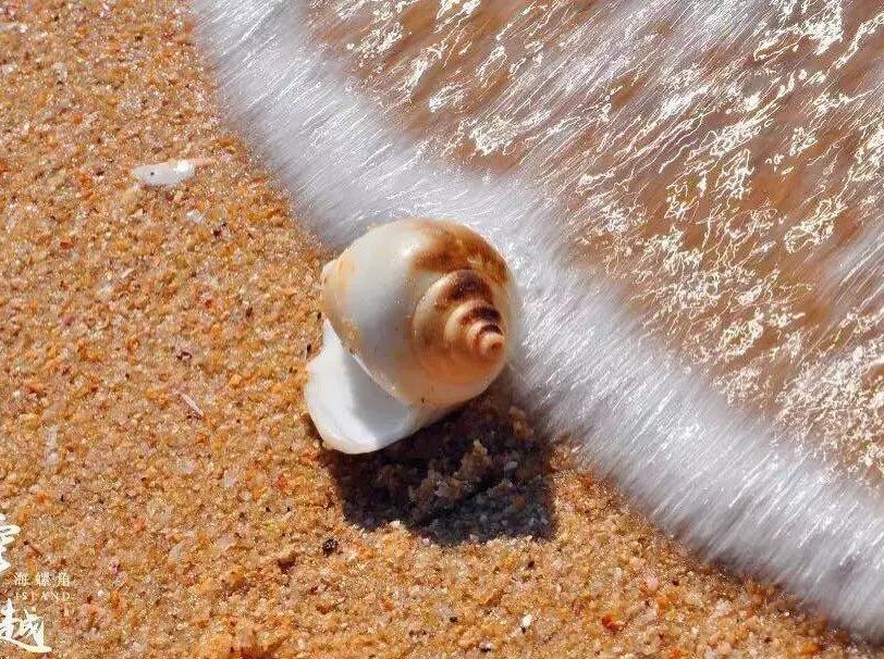 4.29捡海螺,赏巨石阵,最美浅海戏水
