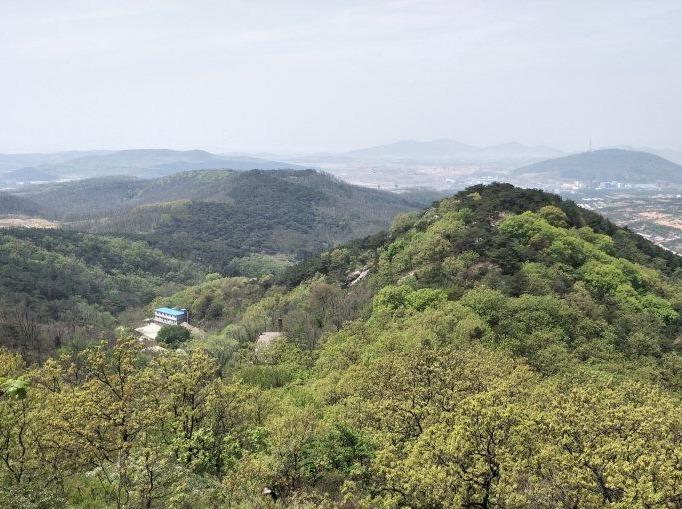 连川户外5月19日小黑山徒步挖野菜活动
