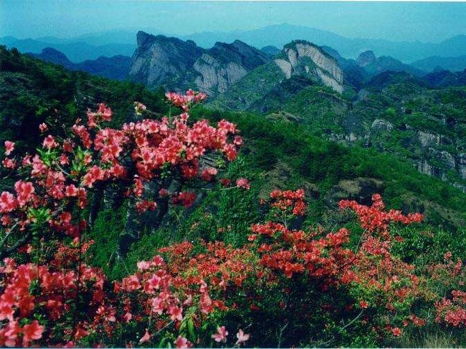 6月3日相约梅花山游山玩水