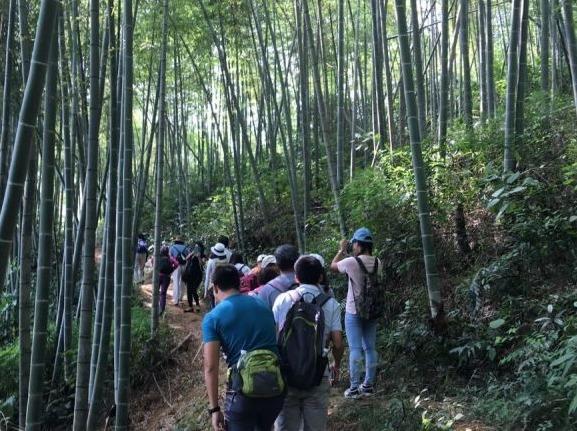 从化美星溪休闲徒步路线+竹筒饭