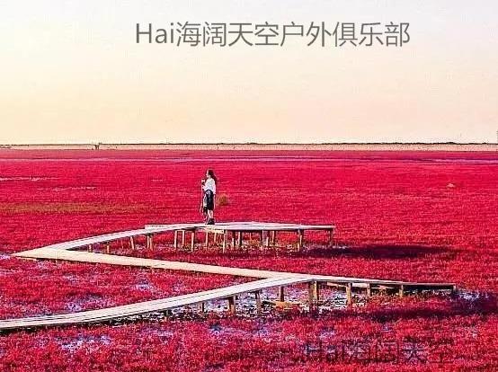 红海滩-吴桥杂技大世界-兴城古城4日游
