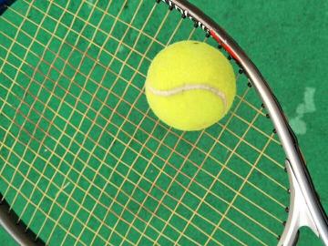 大学城羽毛球网球??