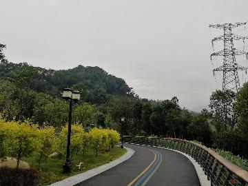 2019.3.3星期日千家山公园徒步健身