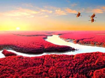 天下奇观红海滩神奇天路笔架山全程无夜车
