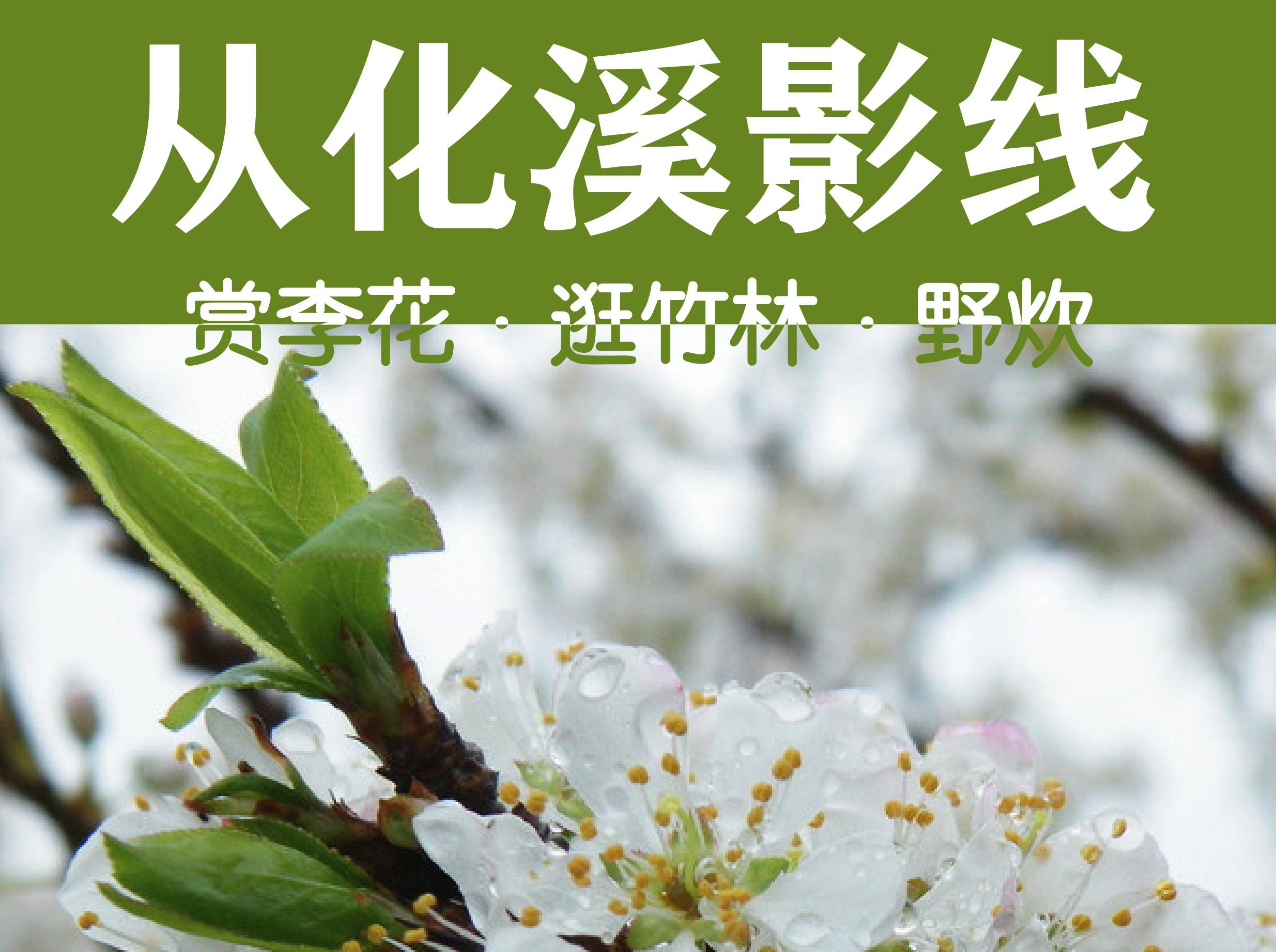 2月12日,徒步溪影线,山间野炊、逛竹林、赏李花