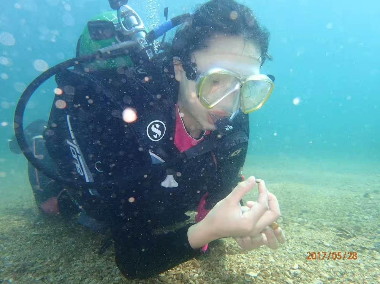 7月1日深圳南澳珊瑚潜水、烧烤一日游