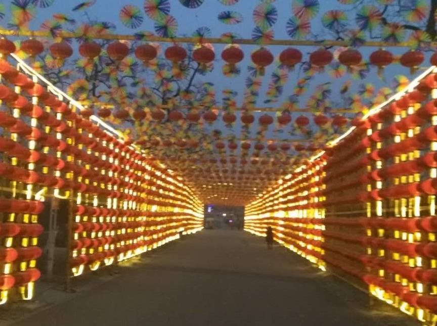正月初六凤凰岭登高祈福,新春游园