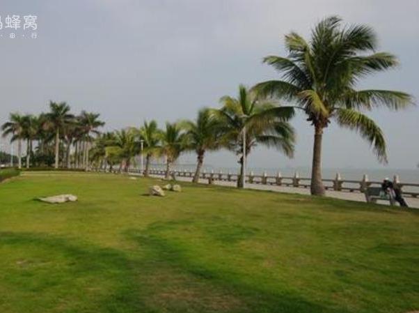 滨海公园一日游