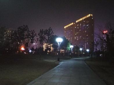 紫贞公园散步遛弯