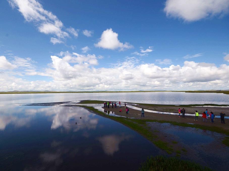 【红原若尔盖3日】最美湿地花湖 九曲黄河