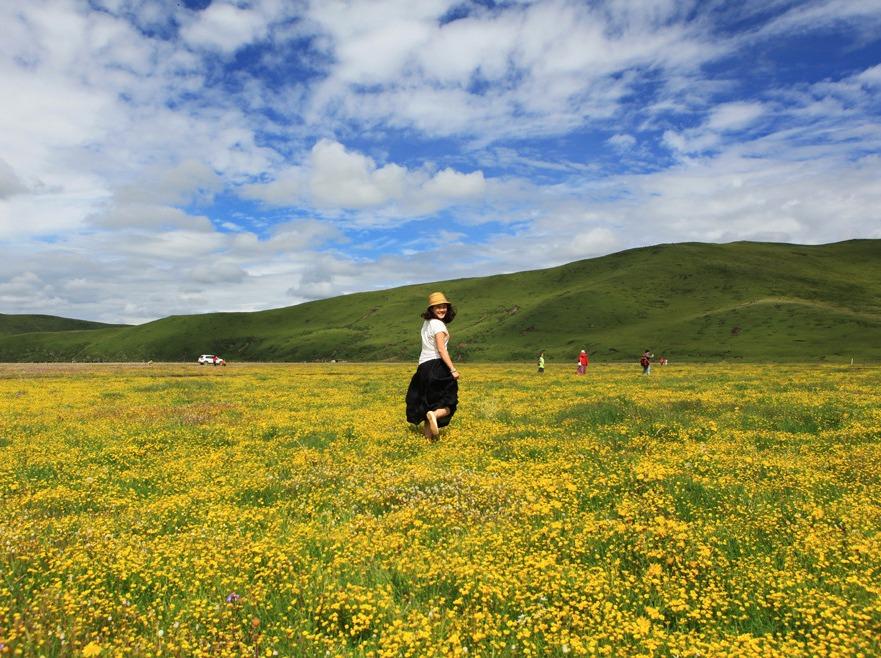 俄木塘  最美草原花海 每年只有30天!