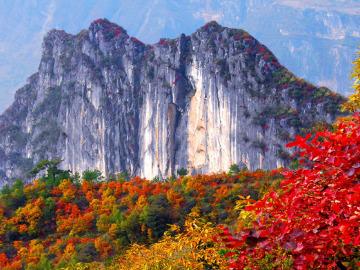 阴条岭重庆最高峰