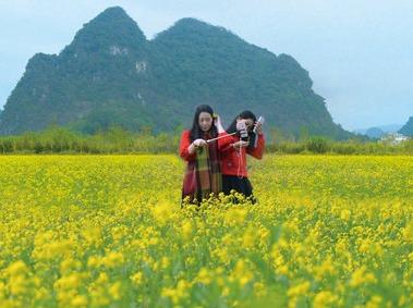 英西峰林徒步赏油菜花