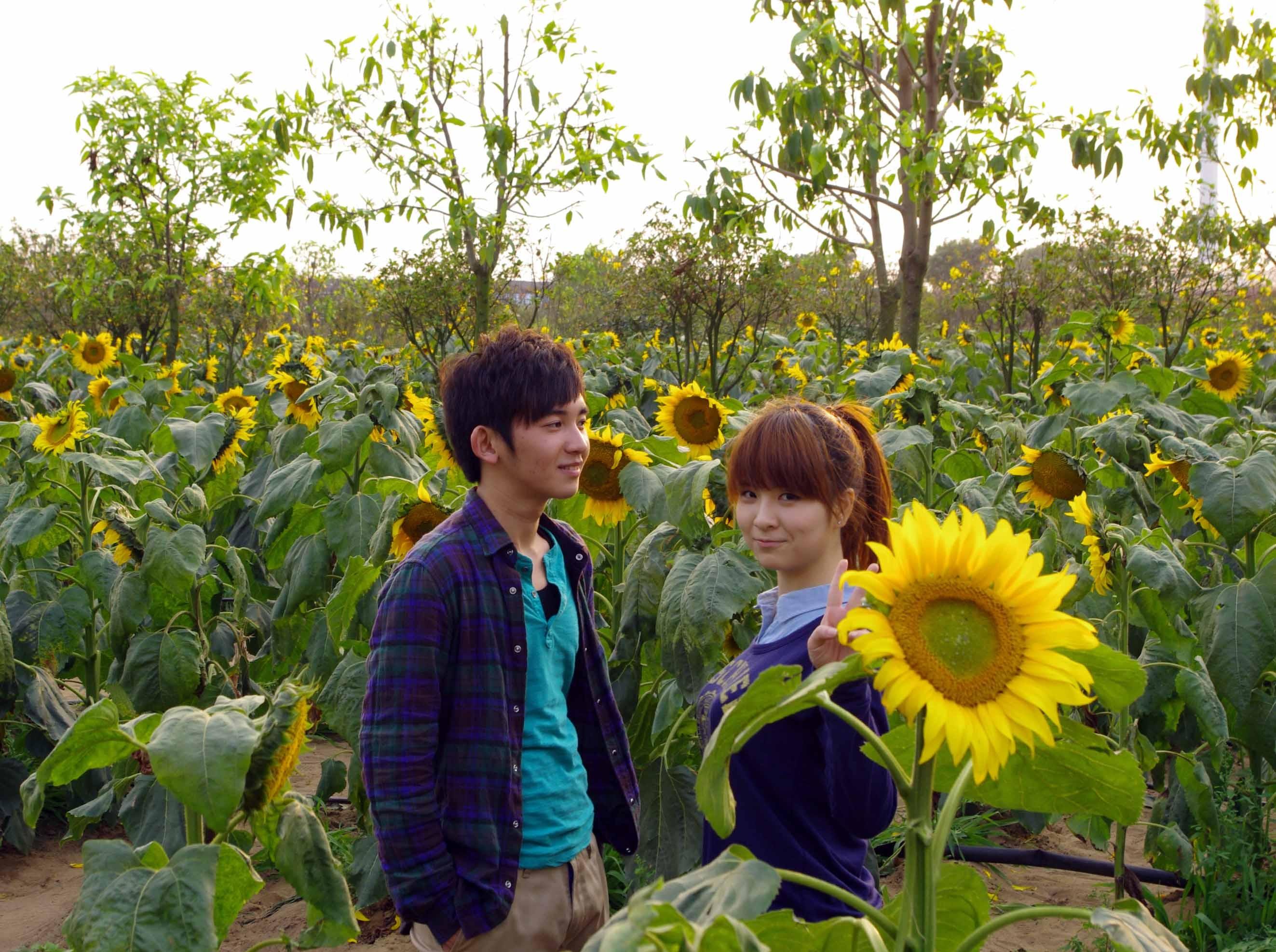 2月19日百万葵园赏花、看小松鼠休闲之旅