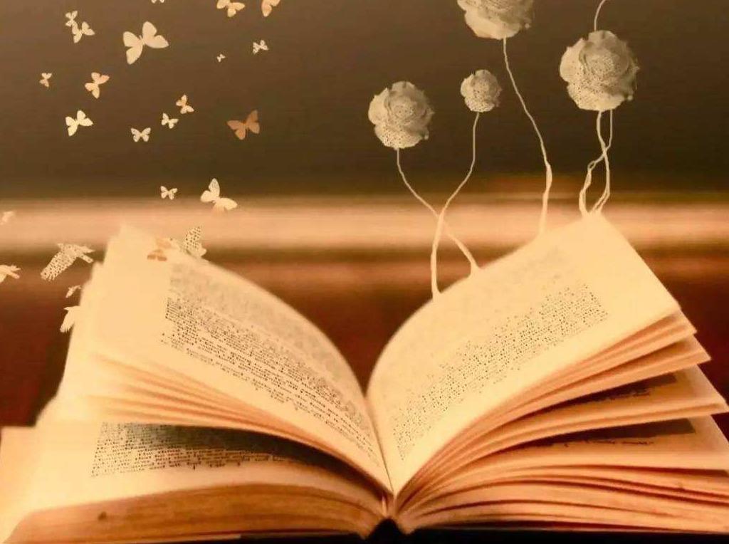 读书沙龙:分享自己喜爱的一本书