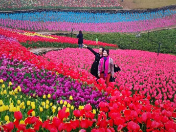 3月19号新余国家植物园看花一日游