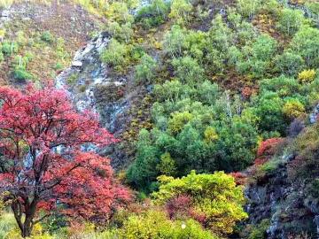 欢乐一家亲10月6号苏木山一日游