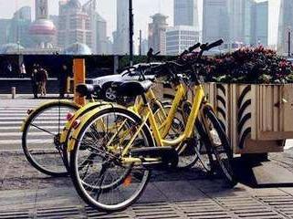 ofo共享单车骑行活动交友季