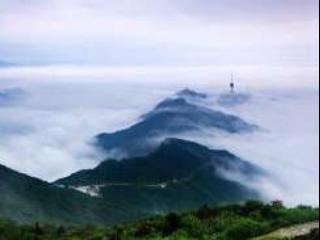 7.30梧桐山爬山