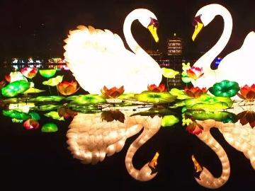 周日动物园夜游灯光艺术节