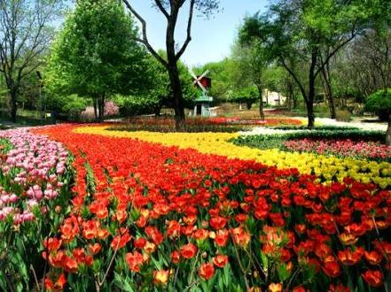 3月25日沈阳植物园游玩