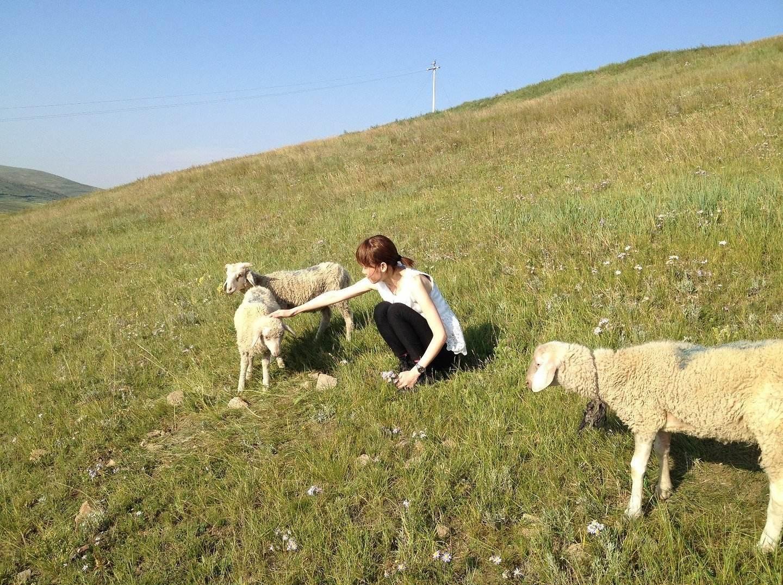 4月30日浪漫相约哈达门高原牧场游玩