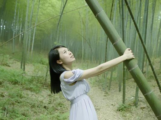 4月21号从化星溪线 竹林徒步
