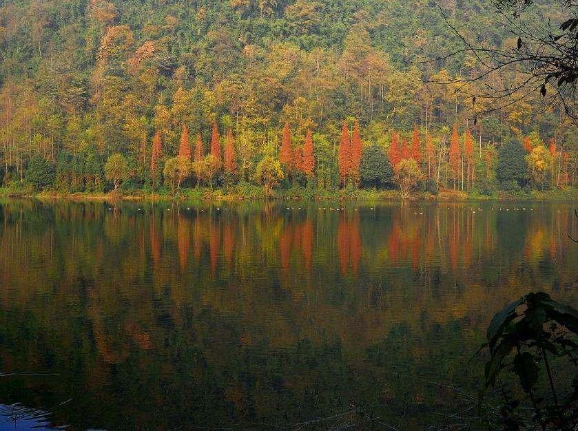 10月28日(周六)绵竹云湖森林公园探秘