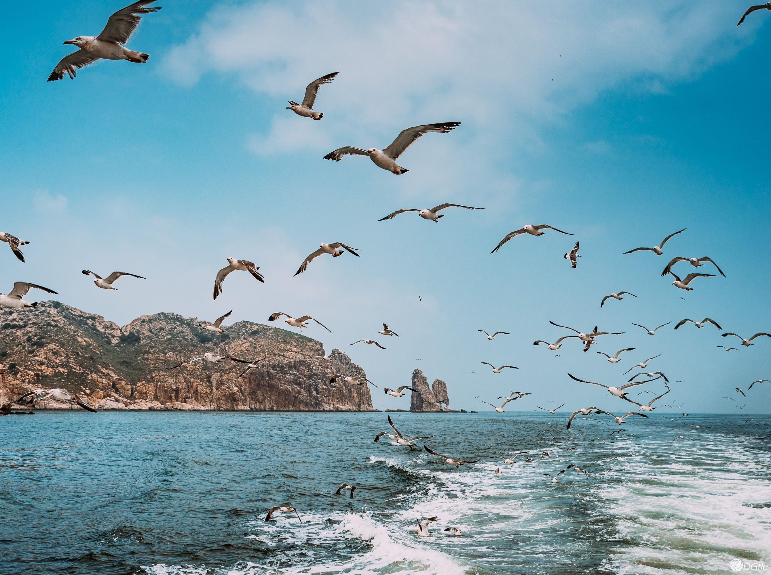 """清明""""神奇海岛游""""长岛、蓬莱快乐三日行"""