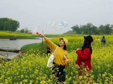 3.30湘阴斗米咀摄影踏青赏花挖野菜放牛